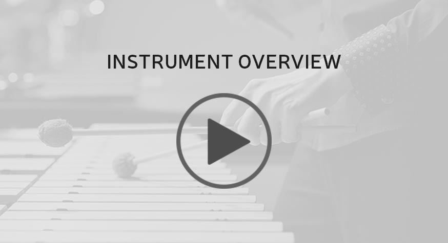 Vital Series: Mallets Instrument Overview